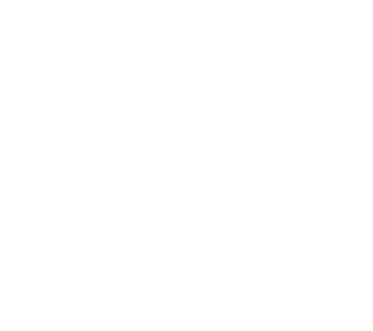 Satiser Galicia 4,8 valoración en google